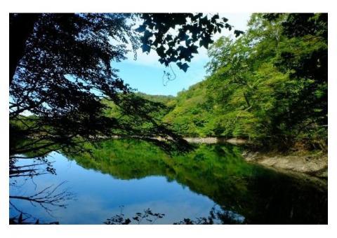 【ご近所さん歓迎】 青森県西津軽郡深浦町の十二湖中継