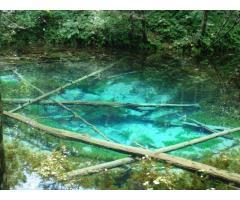 【ご近所さん歓迎】 北海道斜里郡清里町の神の子池の中継