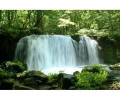 【ご近所さん歓迎】 青森県十和田市奥瀬の奥入瀬渓流の中継