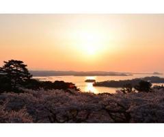 【ご近所さん歓迎】 宮城県宮城郡の松島の中継