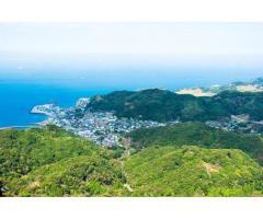 【ご近所さん歓迎】千葉県富津市金谷 の鋸山の中継