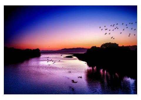 【ご近所さん歓迎】滋賀県高島市鵜川の琵琶湖の中継