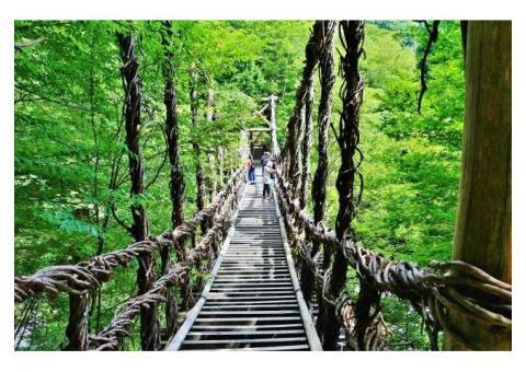 【ご近所さん歓迎】徳島県三好市西粗野山村善徳のかずら橋の中継