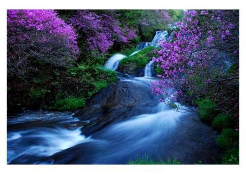 【ご近所さん歓迎】栃木県日光市中宮祠の竜頭の滝の中継