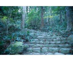 【ご近所さん歓迎】和歌山県田辺市本宮町本宮の熊野古道の中継