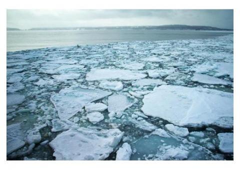 【ご近所さん歓迎】 北海道網走市天都山オホーツク海の流氷中継