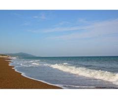 【ご近所さん歓迎】愛知県田原市伊良湖町古山の恋路ヶ浜の体験共有