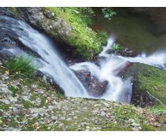 【ご近所さん歓迎】愛知県新城市下吉田ハダナシの阿寺の七滝の体験共有