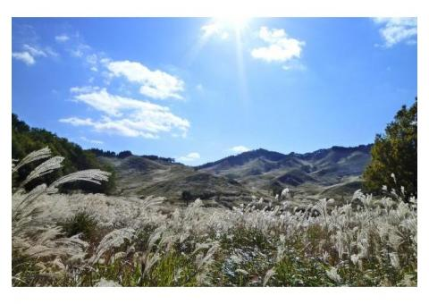 【ご近所さん歓迎】兵庫県神崎郡神河町川上801の砥峰高原の体験共有