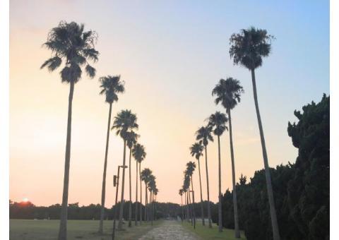 【ご近所さん歓迎】福岡県福岡市東区の海の中道の体験共有