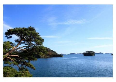 【ご近所さん歓迎】宮城県宮城郡松島町の松島湾の体験共有