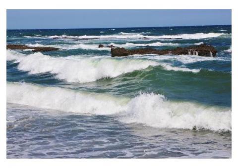 【ご近所さん歓迎】 茨城県東茨城郡大洗町磯浜町の大洗海岸の体験共有