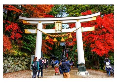 【ご近所さん歓迎】 埼玉県秩父郡長瀞町長瀞の宝登山の体験共有