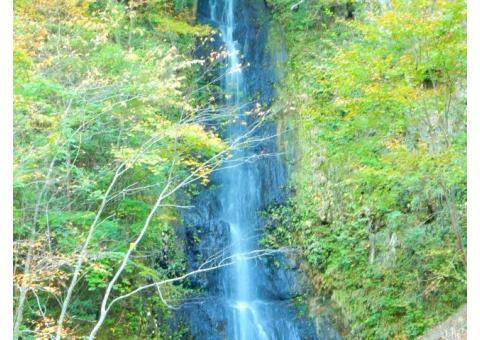【ご近所さん歓迎】 埼玉県秩父市大滝の不動滝の体験共有