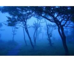 【ご近所さん歓迎】 群馬県高崎市榛名湖町の榛名湖畔の体験共有