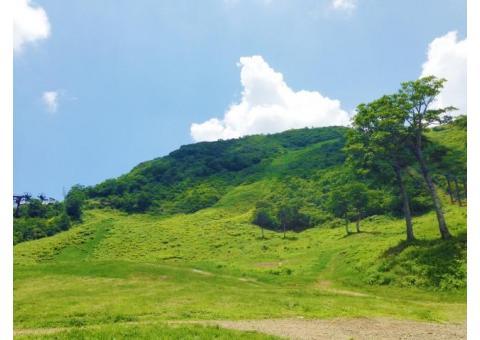 【ご近所さん歓迎】 群馬県利根郡みなかみ町湯檜曽湯吹山国有林の天神平の体験共有