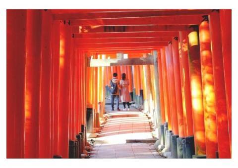 【ご近所さん歓迎】 京都府京都市伏見区の伏見稲荷神社の体験共有