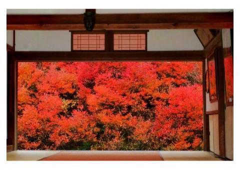 【ご近所さん歓迎】兵庫県豊岡市但東町相田の安国寺の体験共有