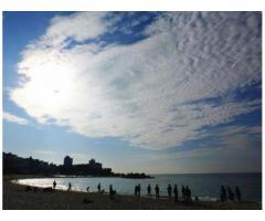 【ご近所さん歓迎】 和歌山県西牟婁郡白浜町の白良浜の体験共有