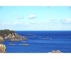 【ご近所さん歓迎】和歌山県東牟婁郡串本町樫野の海金剛の体験共有