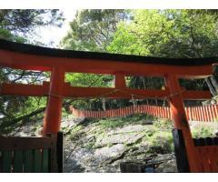 【ご近所さん歓迎】和歌山県新宮市新宮の神倉神社の体験共有