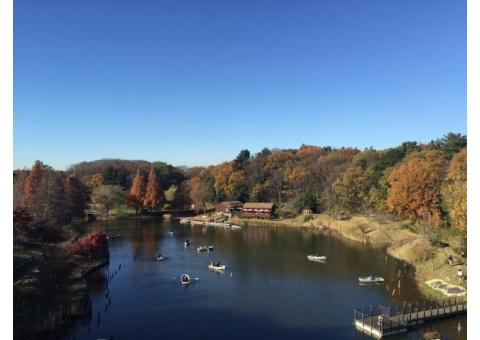 【ご近所さん歓迎】千葉県船橋市金堀町のふなばしアンデルセン公園の体験共有