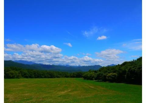 【ご近所さん歓迎】山梨県北杜市高根町清里の清里高原の体験共有