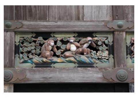 【ご近所さん歓迎】栃木県日光市山内の日光東照宮の体験共有