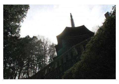 【ご近所さん歓迎】長野県上田市別所温泉の安楽寺の体験共有