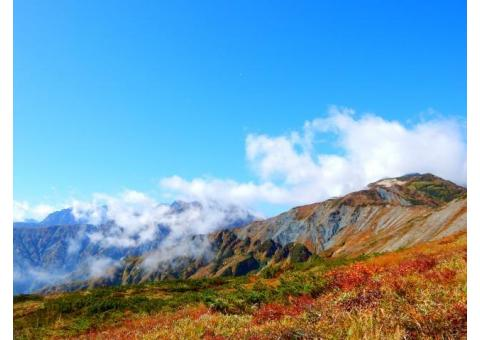 【ご近所さん歓迎】長野県北安曇郡白馬村大字北城の八方尾根自然研究路の体験共有