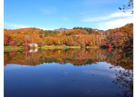 【ご近所さん歓迎】長野県下高井郡山ノ内町平穏の丸池の体験共有