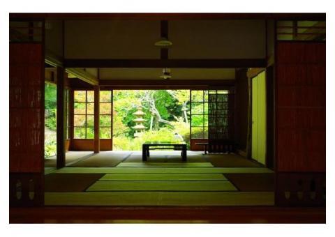 【ご近所さん歓迎】神奈川県鎌倉市山ノ内の浄智寺の体験共有