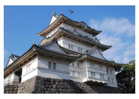【ご近所さん歓迎】 神奈川県小田原市城内の小田原城の体験共有