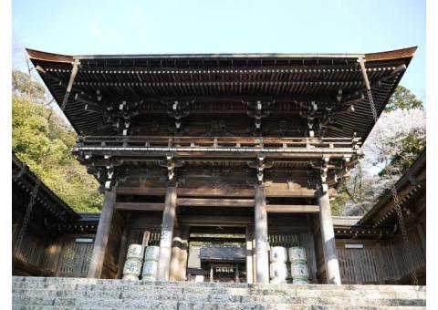 【ご近所さん歓迎】岐阜県岐阜市伊奈波通の伊奈波神社の体験共有