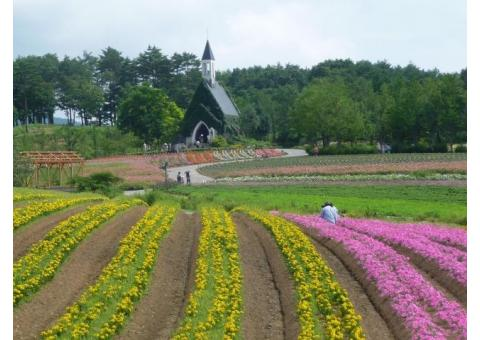【ご近所さん歓迎】岐阜県郡上市高鷲町鷲見の牧歌の里の体験共有