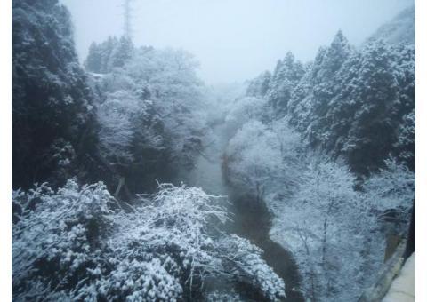 【ご近所さん歓迎】石川県加賀市山中温泉下谷町の鶴仙渓の体験共有