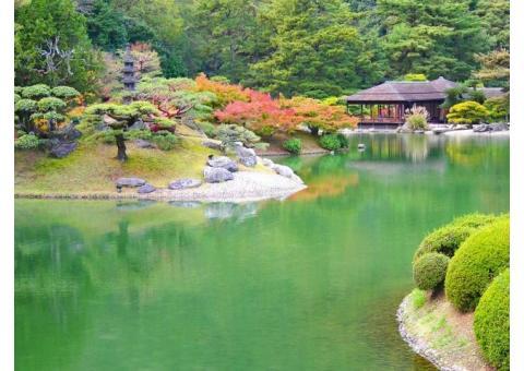 【ご近所さん歓迎】 香川県高松市栗林町の栗林公園 の体験共有