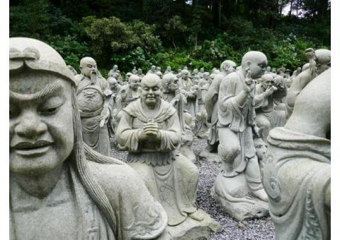 【ご近所さん歓迎】 徳島県三好市池田町白地ノロウチの雲辺寺の体験共有