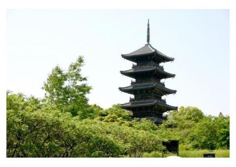 【ご近所さん歓迎】岡山県総社市上林の備中国分寺の体験共有