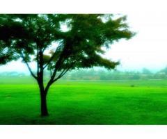【ご近所さん歓迎】岡山県真庭市蒜山富山根の蒜山の体験共有