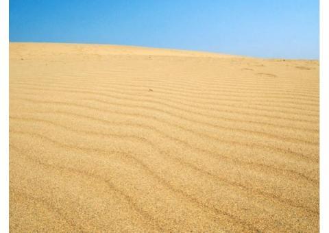 【ご近所さん歓迎】鳥取県鳥取市福部町湯山の鳥取砂丘の体験共有