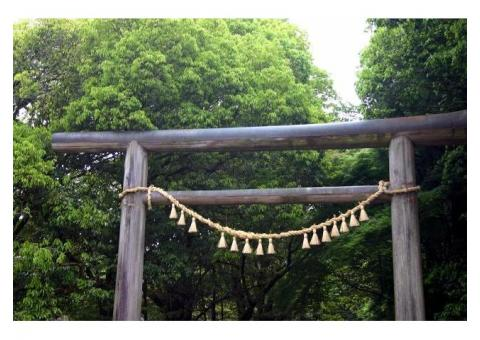 【ご近所さん歓迎】宮崎県西臼杵郡高千穂町岩戸の天岩戸神社の体験共有