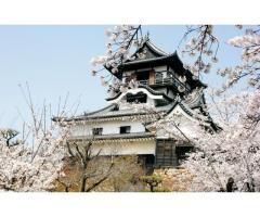 【ご近所さん歓迎】愛知県犬山市犬山北古券の犬山城の体験共有