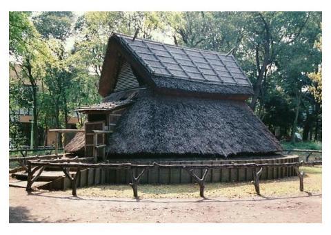 【ご近所さん歓迎】 静岡県静岡市駿河区登呂の登呂遺跡の体験共有