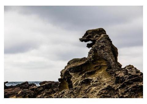 【ご近所さん歓迎】 秋田県男鹿市船川港小浜のゴジラ岩の体験共有