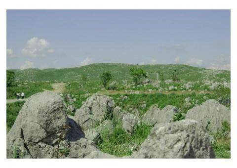 【ご近所さん歓迎】 山口県美祢市秋芳町の秋吉台の体験共有
