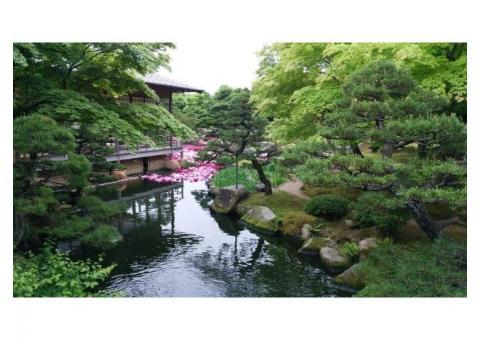 【ご近所さん歓迎】島根県松江市八束町波入の由志園 の体験共有