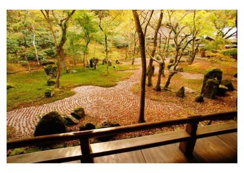 【ご近所さん歓迎】福岡県太宰府市宰府の光明禅寺の体験共有