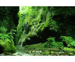 【ご近所さん歓迎】大分県由布市挾間町朴木の由布川渓谷の体験共有