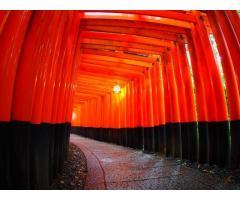 【ご近所さん歓迎】 京都府京都市伏見区深草藪之内町の伏見稲荷の中継